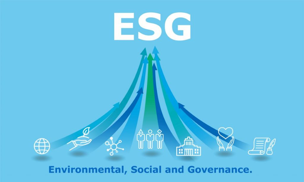 Where should ESG live in the organization?